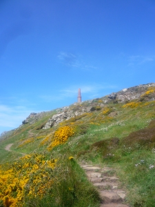 Gorse path leading to the Cape
